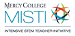 Mercy College Looking for MISTI Scholars