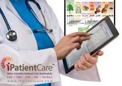 iPatientCare Specialty Focused EHR