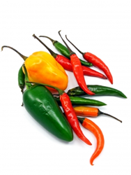 scoville scale for peppers