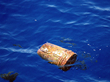 Total Mass of Plastic Particles Littering North Pacific Ocean...