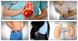 all natural kidney health and kidney function restoration