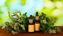 benefits of peppermint oil for hair, skin and health book