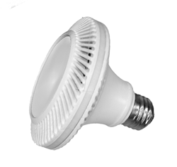 HiveSSL PAR30 6Watt LED bulb with replaceable power supply