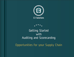 auditing and scorecarding ebook