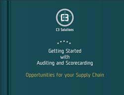 auditing and scorecarding ebook