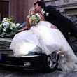 Superstar Limo Service of Orlando Is Offering Customized Wedding Limo...