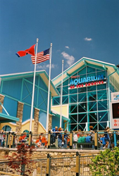 Discounted Pigeon Forge Attraction Tickets Revealed by HearthSide Cabin  Rentals