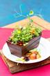 "Big Island Hawaii Restaurant Creates the Freshest Salad in the World called ""The Living Salad"""