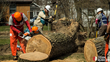 Team Rubicon Launches Operation: Rising Eagle in Response to Tornado...