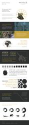 Okavango Delta Infographic