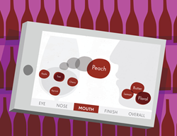 Illustration of Quini on iPad showing how wine terms can be moved around