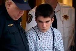Suspect, 16 Year Old Alex Hribal