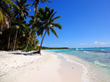 The Travel Rewards Company Book Caribbean Holidays for £499 per...