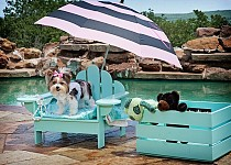 Awesome Outdoor Pet Furniture