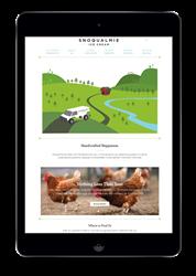 custom website design seattle