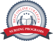 Best Online Colleges Announces 2014's Best Online Nursing Programs