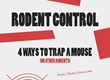 4 Most Effective Mouse Traps Infographic Recently Released by Clean...