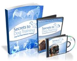 Secrets to Dog Training