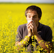Severe Hay Fever Summer - Ten Tips To Fight Hay Fever