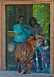 Naples Zoo Celebrates Mother's Day Weekend and National Public...