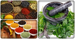 natural healing herbs and spices recipes and uses
