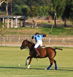 Polo in Wine Country at Temecula Valley Polo Club - Second Season...