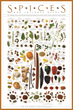 Classic SPICES Poster Now Available Online
