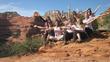 Sedona Goddess Empowerment Nature Journey