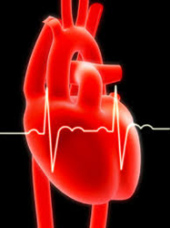 Heartware Ventricular Assist System Recalled (Class I)