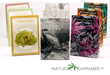 The Natural Cannabis Company's HIGH ART Challenge Unveils the First...