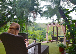 Ecotourism solutions for corporate travel