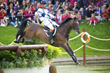 William Fox-Pitt-Lionheart
