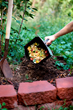 Worm Bombs thrive on shredded food scraps and yard trimmings and are an important partner in the composting or food-scrap recycling process.