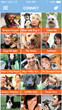 Popular App Dog Land Releases New Messaging Feature
