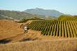 Hotel Healdsburg Farm to Fork Culinary Journey / Jordan Winery Estate Tour & Tasting