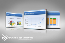 Dynamic Benchmarking Reports