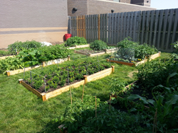 The Grow Your Park grant program will fund community garden projects to specifically benefit low-income community members.