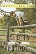 David L. Brannon's New Book Provides Insight on World Developments...