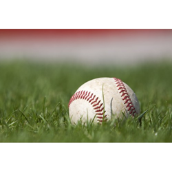 Image of a baseball in the grass