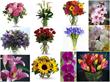 May Wedding Flower Ideas from HotRef.com