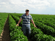 Western Blend Fertilizer Receives Organic Listings from Organic Materials Review Institute