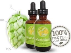 Meridium Review