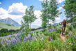 Biking in the wildflowers during Crested Butte Bike Week by Trent Bona.