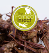 The Farmed Insect Company