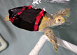 Rescued Sea Turtle Taking Flight to the Lone Star State After...