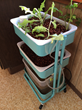 Mini GYO Aquaponics Unit - Ingenuity Innovation Center