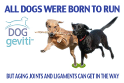 DOGgeviti® commercial video at: https://www.youtube.com/watch?v=2dcGY6ylSlk