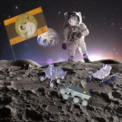 dogecoin, lunar, nascar, jamaican bobsled, doge, cryptocurrency, bitcoin, dogesled, moon, lunar challenge, micro rovers, Team Phoenicia, RevUp Render, ultimate dogecoin