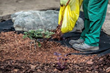 NCWM Reports that Consumers Are Getting Short-Changed on Bagged Landscape Mulch