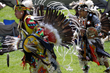 Men's Traditional Dancers at the 2013 Plains Indian Museum Powwow. Buffalo Bill Center of the West photo by Ken Blackbird.